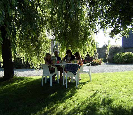 Breakfast under the willow tree
